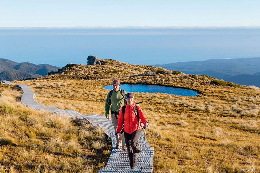 Wilderness Hiking New Zealand adventure tours
