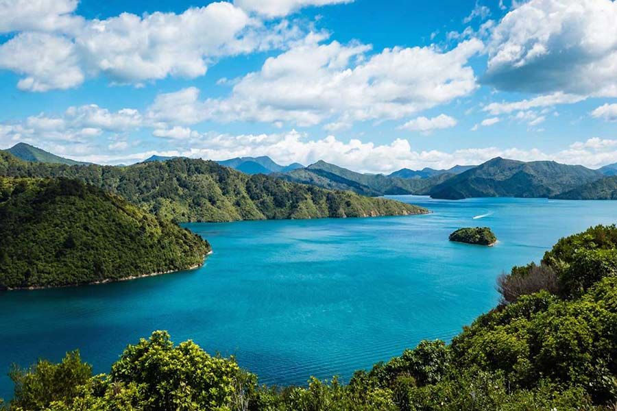 Queen Charlotte Sound Fishing trip New Zealand