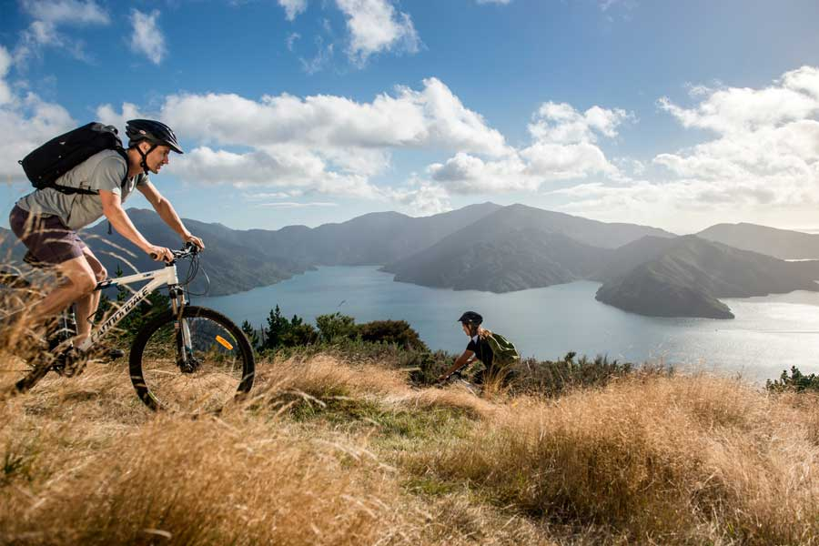 Queen Charlotte Track biking things to do in Marlborough