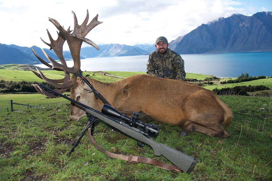 New Zealand hunting trips